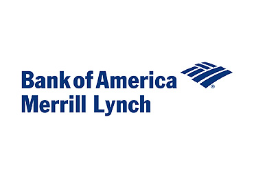 Merrill Lynch Investment Bank